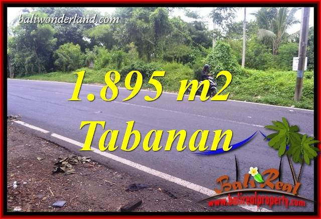 FOR sale 1,895 m2 Land in Tabanan Bali TJTB399
