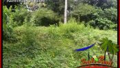 Affordable Land in Tabanan for sale TJTB399