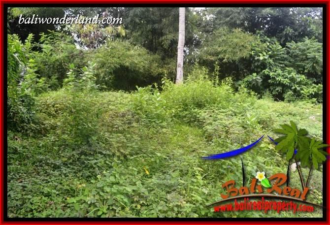 Affordable Land in Tabanan for sale TJTB399