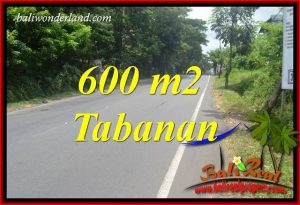 Affordable 600 m2 Land for sale in Tabanan Bali TJTB401