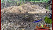 Affordable 600 m2 Land for sale in Tabanan Bali TJTB401