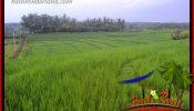 Affordable Land sale in Tabanan Selemadeg Bali TJTB402