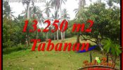 Beautiful 13,250 m2 Land sale in Tabanan Bali TJTB403