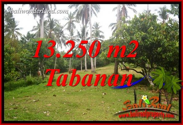 FOR sale Beautiful 13,250 m2 Land in Tabanan Bali TJTB403