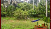 Beautiful 13,250 m2 Land sale in Tabanan Bali TJTB403