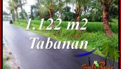 Exotic Property Tabanan Land for sale TJTB404