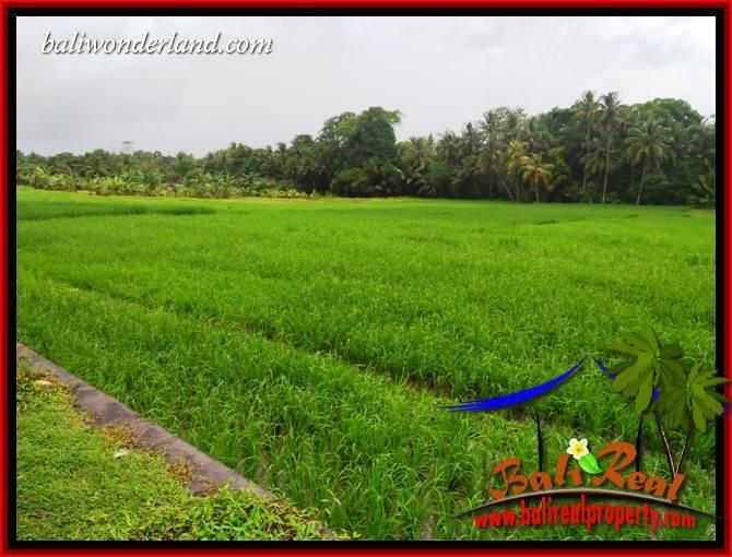 Exotic Property Tabanan Land for sale TJTB404