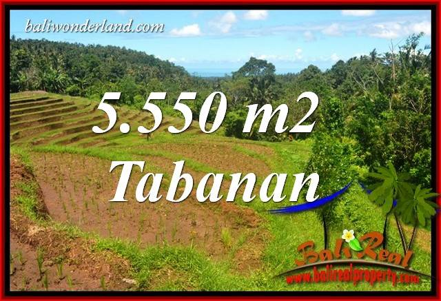 FOR sale Magnificent 5,550 m2 Land in Tabanan Bali TJTB405