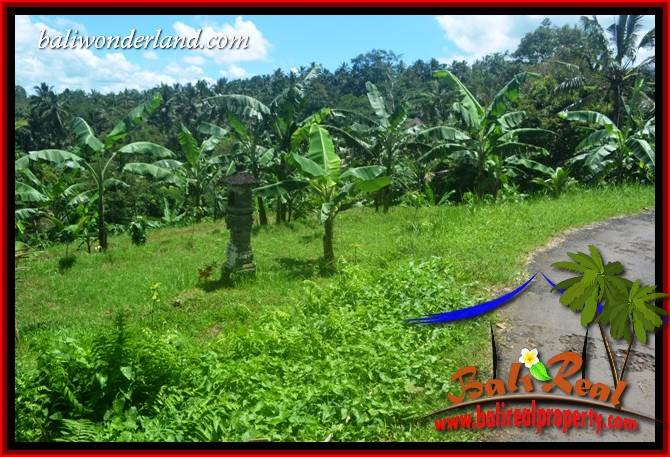 Tabanan Selemadeg Bali Land for sale TJTB405