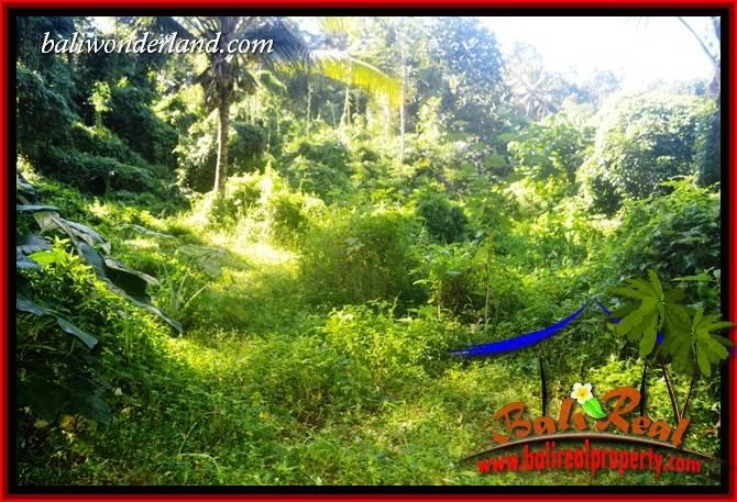 Affordable 10,000 m2 Land in Tabanan Bali for sale TJTB406