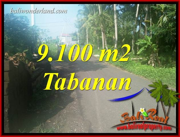 Exotic Property Tabanan Kerambitan Bali 9,100 m2 Land for sale TJTB407