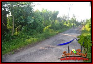 Magnificent 9,350 m2 Land sale in Tabanan Bali TJTB409
