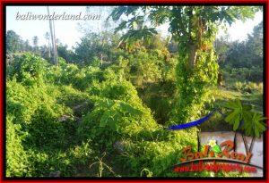 Magnificent 9,350 m2 Land sale in Tabanan Bali TJTB409