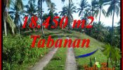 Affordable Property Tabanan Land for sale TJTB410
