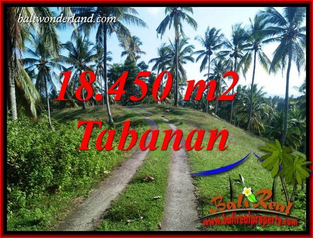 Magnificent Property Land in Tabanan Bali for sale TJTB410