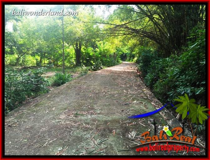 FOR sale Magnificent Property Land in Tabanan TJTB413