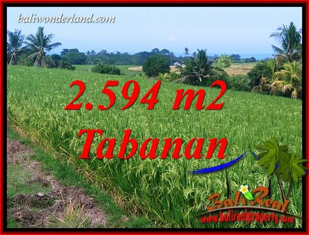 Affordable Land for sale in Tabanan Bali TJTB414