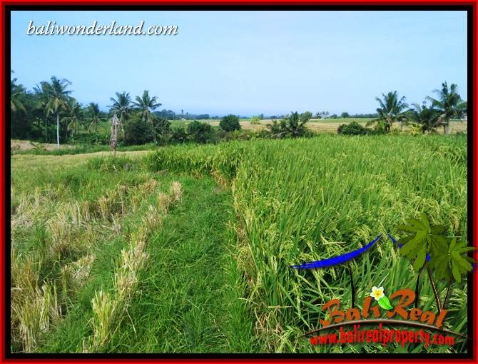 FOR sale Magnificent Property Land in Tabanan TJTB414