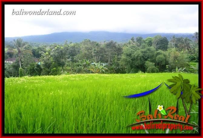 Beautiful Property Land for sale in Tabanan Bali TJTB415