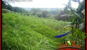 Affordable 6,500 m2 Land sale in Tabanan Bali TJTB416
