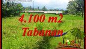 Magnificent Property 4,100 m2 Land sale in Tabanan Penebel TJTB417