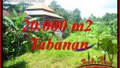Beautiful Tabanan Land for sale TJTB418