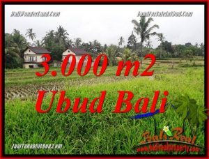 Magnificent Ubud Tegalalang 3,000 m2 Land for sale TJUB698