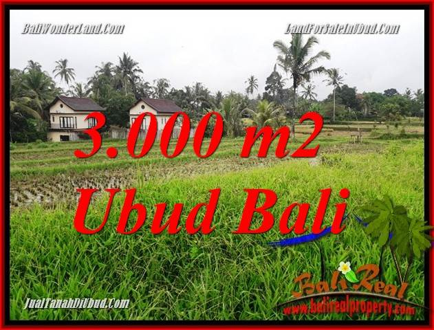 Exotic 3,000 m2 Land in Ubud Tegalalang for sale TJUB698