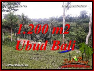 FOR sale Magnificent Land in Ubud TJUB699
