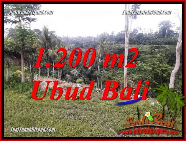 Beautiful Property Ubud Tegalalang Bali Land for sale TJUB699