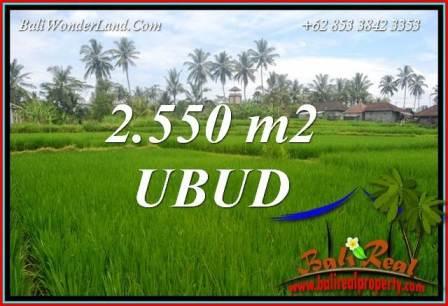 Beautiful Land for sale in Ubud Bali TJUB700