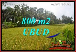 Beautiful 800 m2 Land in Sentral Ubud for sale TJUB707
