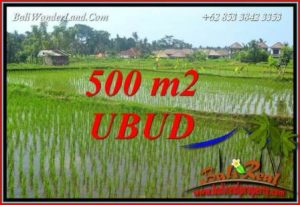 FOR sale Magnificent Property Land in Ubud TJUB708