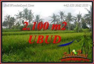 Magnificent Property 2,100 m2 Land sale in Ubud Pejeng TJUB710