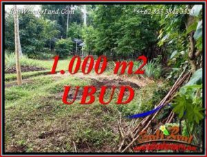 FOR sale Affordable Property Land in Ubud TJUB712