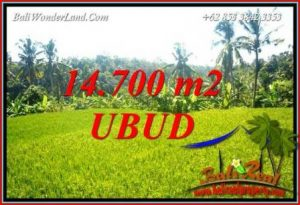 Magnificent 14,700 m2 Land for sale in Ubud Tegalalang TJUB717