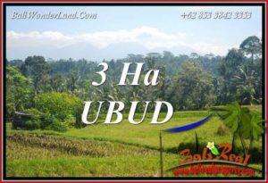 30,000 m2 Land sale in Ubud Bali TJUB718