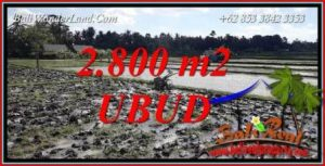 Magnificent 2,800 m2 Land sale in Ubud Bali TJUB722