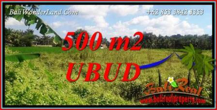 Magnificent Land sale in Ubud Bali TJUB724