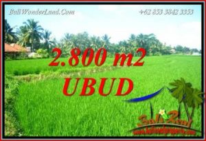 Magnificent Property 2,800 m2 Land in Sentral Ubud Bali for sale TJUB726