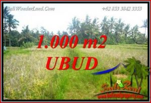 Exotic Property 1,000 m2 Land for sale in Ubud Pejeng TJUB727