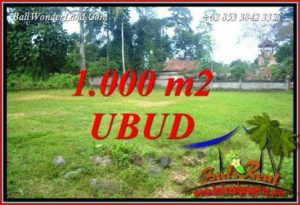FOR sale Affordable Property 1,000 m2 Land in Ubud Pejeng TJUB728