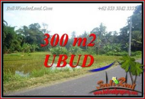 FOR sale 300 m2 Land in Ubud Bali TJUB730