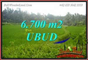 FOR sale Magnificent 6,700 m2 Land in Ubud Bali TJUB731