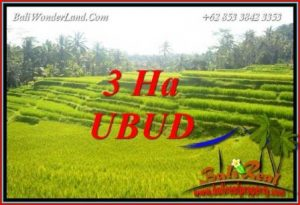 FOR sale Magnificent Land in Ubud TJUB733