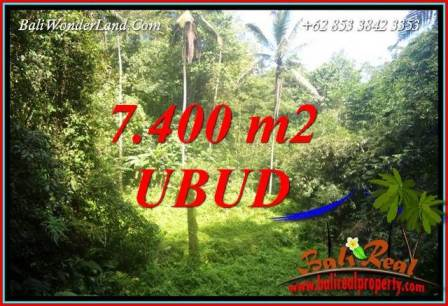7,700 m2 Land in Ubud Bali for sale TJUB734
