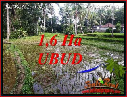 Magnificent Property Ubud Tegalalang Bali 16,000 m2 Land for sale TJUB735