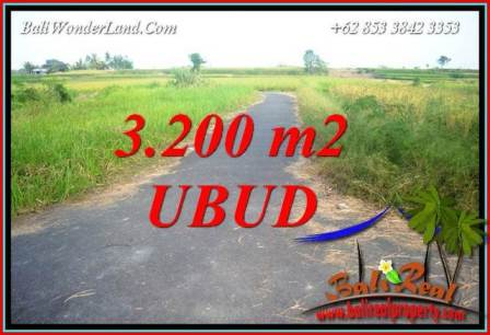 Beautiful 3,200 m2 Land for sale in Ubud Singapadu Bali TJUB736