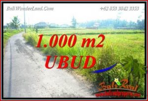 Affordable Property 1,000 m2 Land in Ubud Pejeng for sale TJUB739