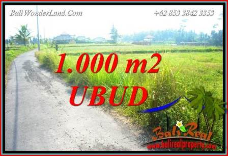 Magnificent Property Land for sale in Ubud Bali TJUB739